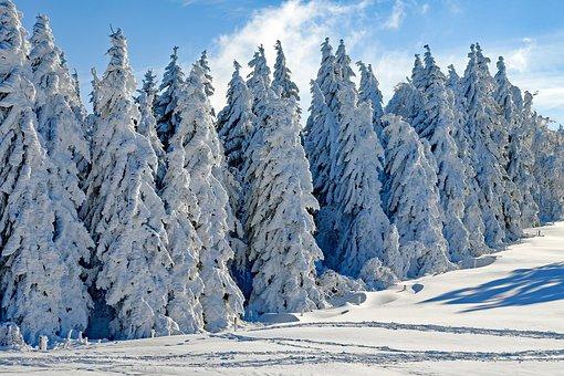 Ilustracja do informacji: Opieka medyczna podczas ferii zimowych